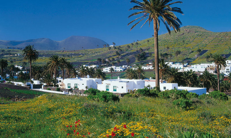 3 rural excursion ideas on the Canary Islands